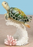 Peaceful Turtle